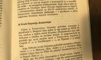 budai-zsibvasar-bolhapiac-sbs-01-IMG_9186
