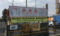 budai-zsibvasar-bolhapiac-sbs-01-IMG_1635