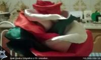 lord-rozsa-a-viragdalhoz-sbs-07
