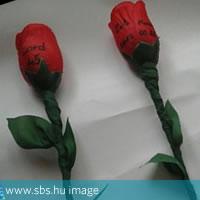 Lord rózsa - a virágdalhoz